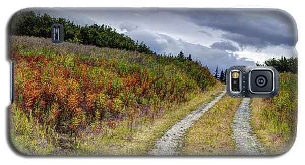 Galaxy S5 Case featuring the photograph Country Road In Fall by Michele Cornelius