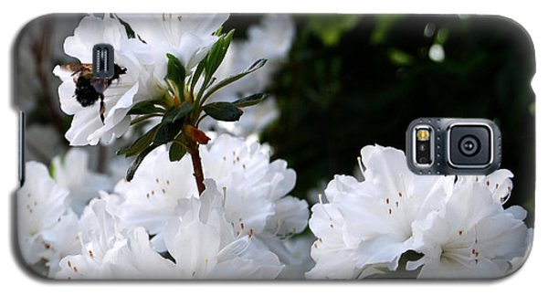 Galaxy S5 Case featuring the photograph Covered In Pollen A Bee At Work by Linda Mesibov