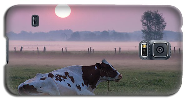 Cow In Meadow Galaxy S5 Case by Hans Engbers
