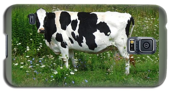 Cow In The Flowers Galaxy S5 Case by Patricia Overmoyer