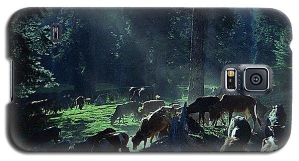 Cows Come Home Galaxy S5 Case by Vilas Malankar