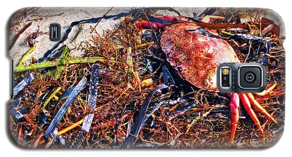Galaxy S5 Case featuring the photograph Crab Boil by William Fields