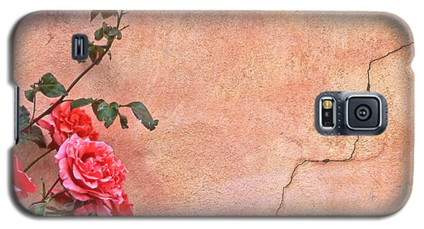 Cracked Wall And Rose Galaxy S5 Case