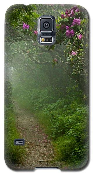 Craggy Path 2 Galaxy S5 Case