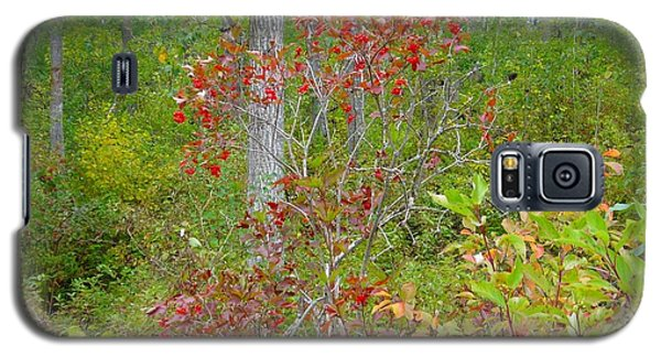 Galaxy S5 Case featuring the photograph Cranberries With Early Autumn Colors by Jim Sauchyn
