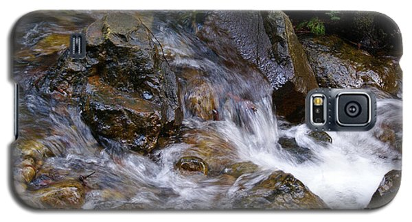 Creek Scene On Mt Tamalpais Galaxy S5 Case