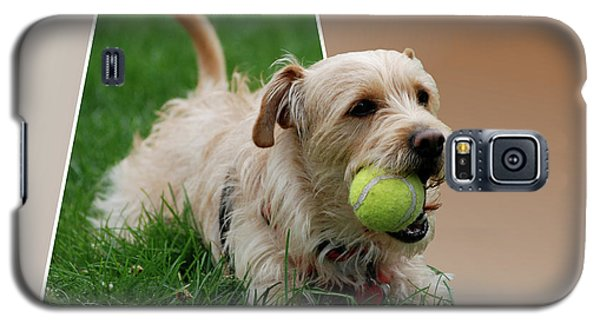 Galaxy S5 Case featuring the photograph Cruz My Ball by Thomas Woolworth