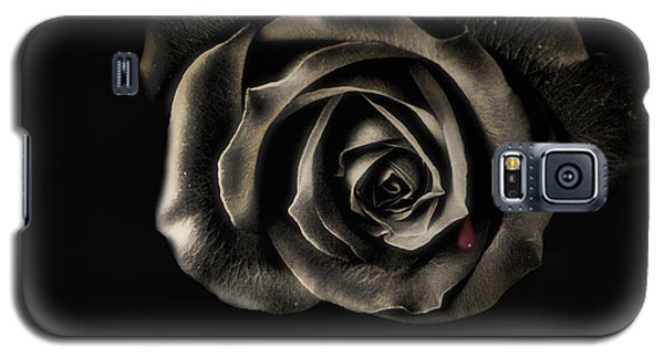 Crying Black Rose Galaxy S5 Case by Danuta Bennett