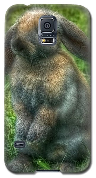 Galaxy S5 Case featuring the photograph Curious Bunny by Tyra  OBryant
