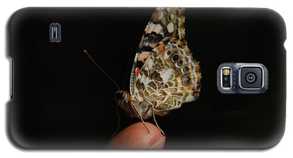 Galaxy S5 Case featuring the photograph Curious Butterfly by Tam Ryan
