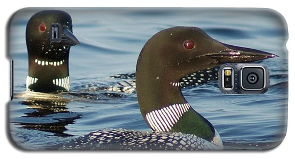 Curious Loons Galaxy S5 Case
