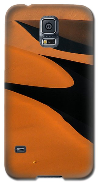 Curves Galaxy S5 Case