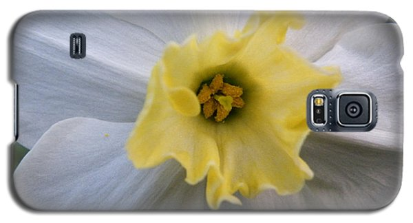 Daffodil Emotions Galaxy S5 Case