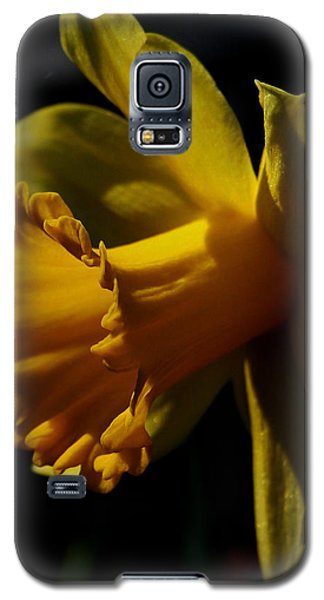 Galaxy S5 Case featuring the photograph Daffodil by Karen Harrison