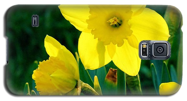 Galaxy S5 Case featuring the photograph Daffodils by Sherman Perry