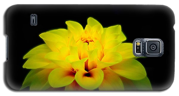 Galaxy S5 Case featuring the photograph Dahlia Delight by Jeanette C Landstrom