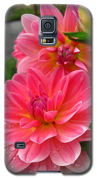 Dahlia Dew Galaxy S5 Case