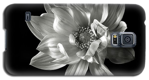 Dahlia In Black And White Galaxy S5 Case