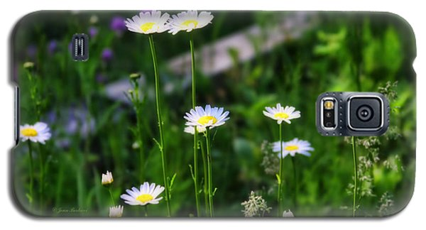 Galaxy S5 Case featuring the photograph Dainty by Joan Bertucci
