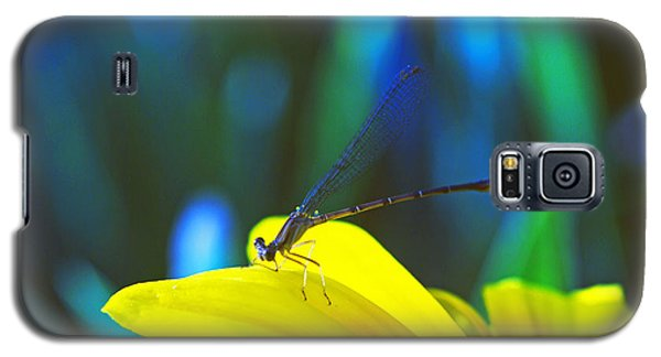 Galaxy S5 Case featuring the photograph Daisy And Dragonfly by Kay Lovingood