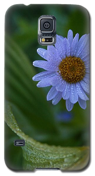 Daisy Dew Galaxy S5 Case