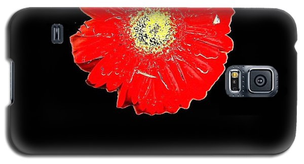 Galaxy S5 Case featuring the photograph Daisy Reflection by Carolyn Repka