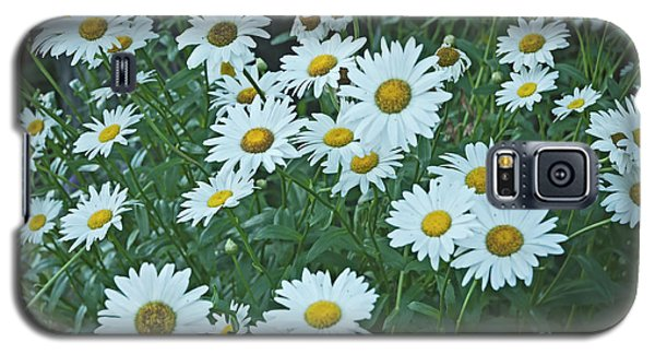 Daisy's Don't Tell Galaxy S5 Case