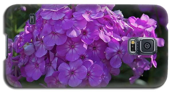 Galaxy S5 Case featuring the photograph Dappled Light by Joseph Yarbrough
