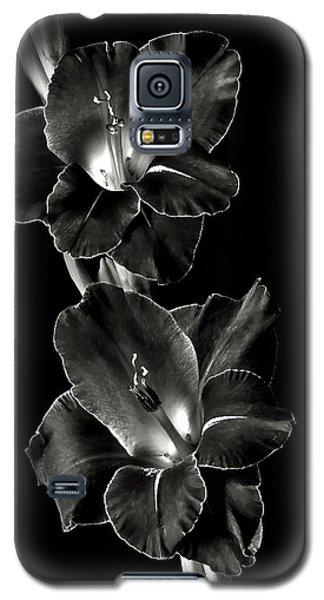 Dark Gladiolas In Black And White Galaxy S5 Case
