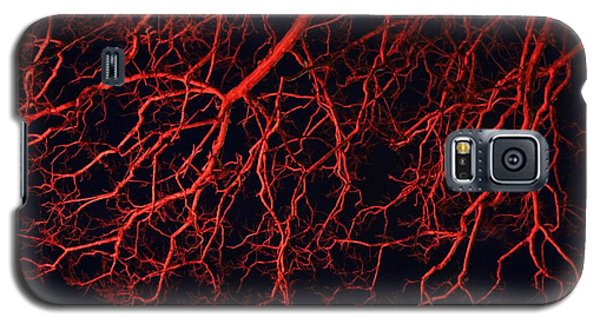Galaxy S5 Case featuring the photograph Dark Heart by Rdr Creative