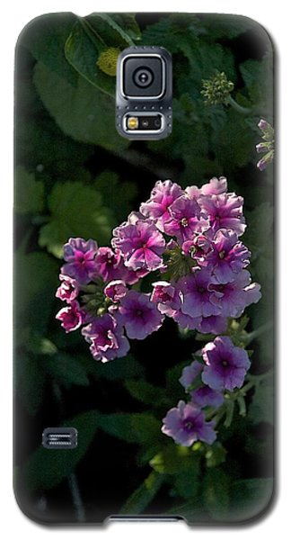Galaxy S5 Case featuring the photograph Dark by Joseph Yarbrough
