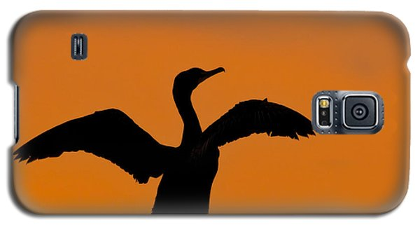 Dawn Of A Double-crested Cormorant  Galaxy S5 Case