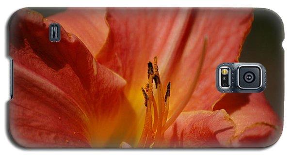 Daylilly Galaxy S5 Case