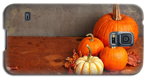 Galaxy S5 Case featuring the photograph Decorative Fall Pumpkins by Verena Matthew