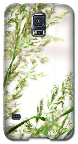 Defying Time Galaxy S5 Case by France Laliberte
