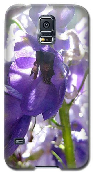 Delphiniums Galaxy S5 Case by Bonnie Goedecke