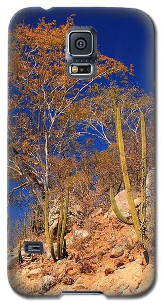 Desert Colors Galaxy S5 Case