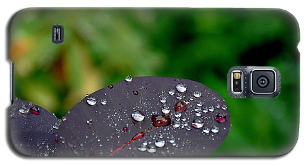 Galaxy S5 Case featuring the photograph Dew Drops On Smoke Tree Leaves by Tanya  Searcy