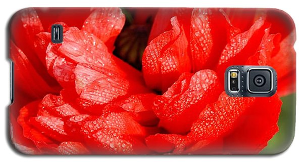 Galaxy S5 Case featuring the photograph Dewdrops by Fotosas Photography
