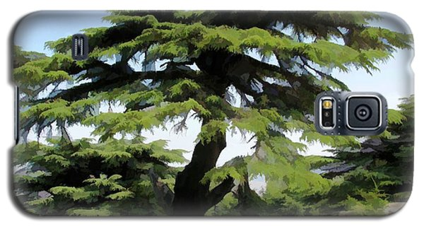 Do-00511 Cedar Forest Galaxy S5 Case