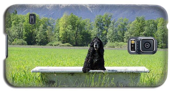 Dog In Bathtub Galaxy S5 Case