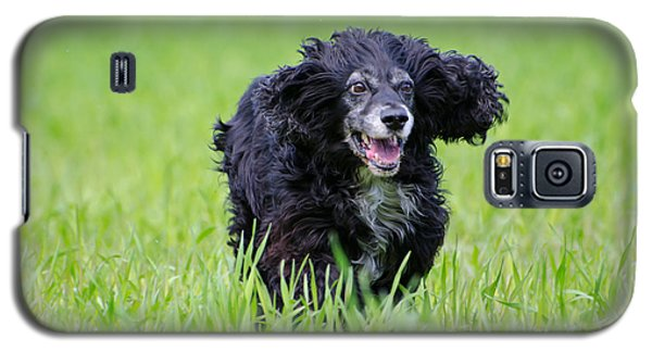 Dog Running On The Green Field Galaxy S5 Case