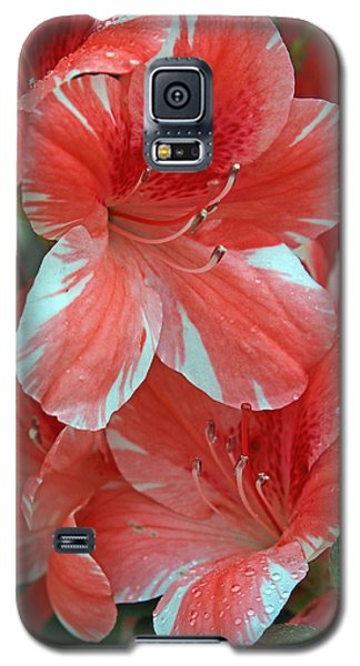 Galaxy S5 Case featuring the photograph Dogwood Azalea After Rain by Larry Nieland