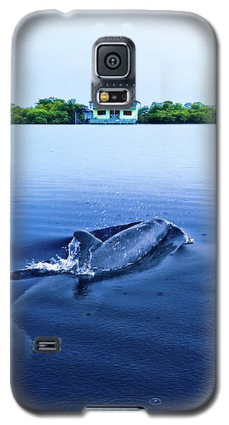 Dolphins By The Mangrove House Galaxy S5 Case