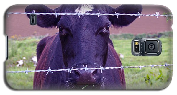 Don't Fence Me In Galaxy S5 Case