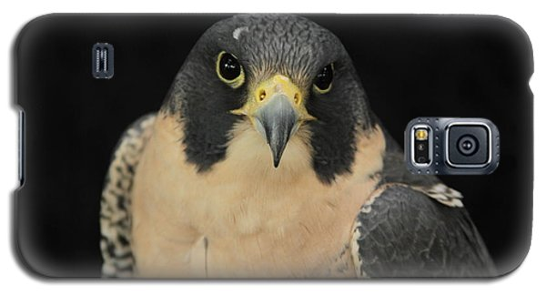 Don't Flinch... I Am Looking At You Galaxy S5 Case by Laddie Halupa