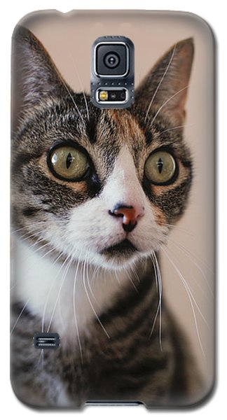 Dora Galaxy S5 Case