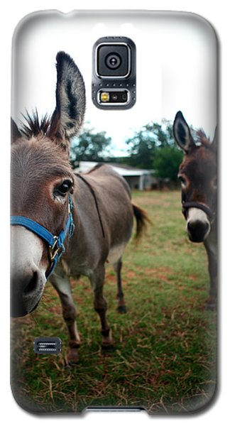 Galaxy S5 Case featuring the photograph Doting Donkeys by Lon Casler Bixby