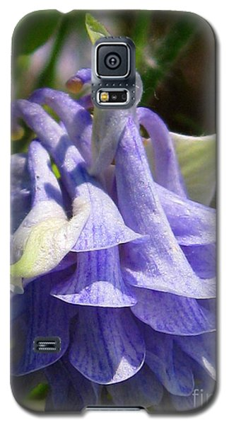 Galaxy S5 Case featuring the photograph Double Columbine Named Light Blue by J McCombie