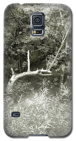 Galaxy S5 Case featuring the photograph Dragon Bones by Mary Almond